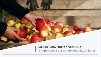 Palots para fruta y verdura: la importancia del tratamiento fitosanitario