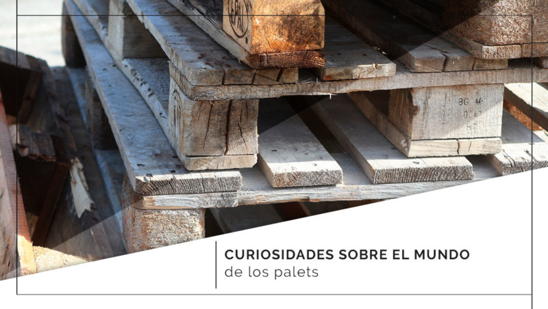 Curiosidades sobre el mundo de los palets